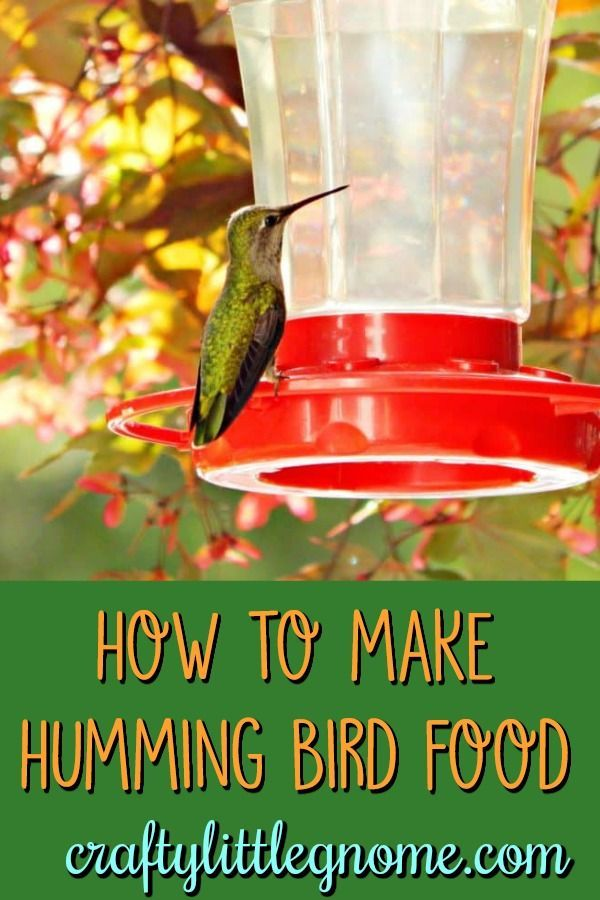 How To Make Hummingbird Nectar Recipe With Images Make