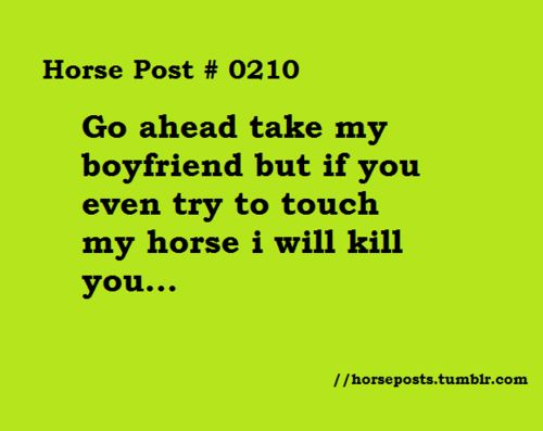 equestrian quotes tumblr - photo #22