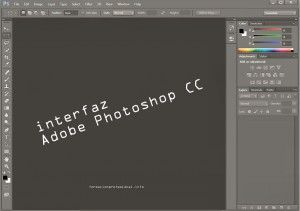 Captura de pantalla: Espacio de trabajo Adobe Photoshop.