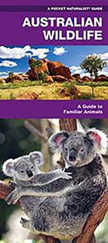 Australian Wildlife: A Folding Pocket Guide to Familiar Species (A Pocket Naturalist Guide):   divThe world's third-largest island nation has a wide range of wildlife - there are over 450 species of mammals, 300 species of lizards, 110,000 species of insects, not to mention 800 species of birds. Australian Wildlife is the ideal reference guide for bird lovers of all skill levels. This beautifully illustrated guide highlights over 140 familiar and unique species. A map of the prominent ...