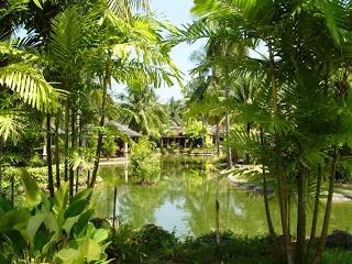 Just a glimpse of Le Meridien Khao Lak Resort & Spa Resort  www.islandescapes.com.au