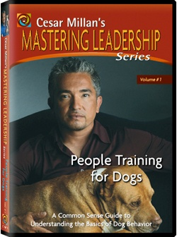 informative speech the dog whisperer Although césar millán is known as the dog whisperer, his tips to train and raise dogs could very well apply to life in general not only that, some of them could also come in handy when dealing with other people, and even your own kids below are 7 quotes extracted from his book cesar millan´s .