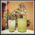 Lemonad med citron och ingefära - Recept från Mitt kök - Mitt Kök | Recept | Mat | Vin | Öl