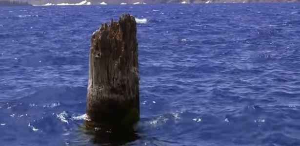 Sim, você leu o título certo. O gigante lago Crater, situado no Oregon (Estados Unidos), tem um tronco de árvore que está flutuando na vertical pelas águas há pelo menos 120 anos. Os motivos deste …