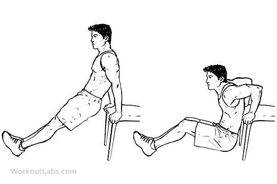 Chair / Bench Tricep Dips