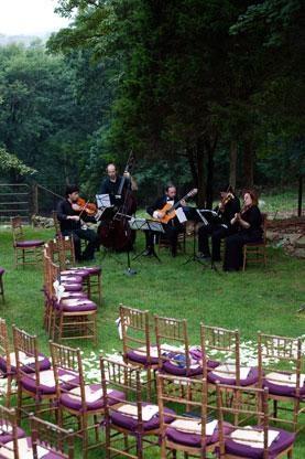 Want Great Ceremony Music ViolinWedding CeremoniesWeddings