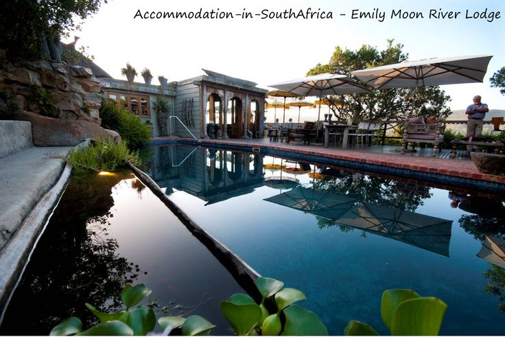 Beautiful pool at Emily Moon River Lodge. Emily Moon River Lodge accommodation. Plettenberg Bay accommodation. Accommodation in Plettenberg Bay.