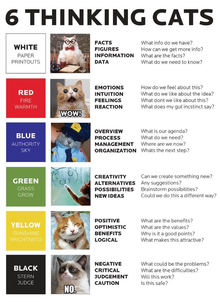 6 Thinking Cats! remix of the 6 thinking hats by Edward de Bono