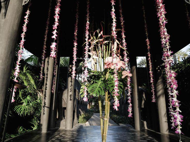 Hotels in Koh Phangan, Koh Tao, Phuket – Rebecca B.