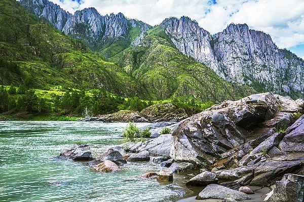 Mountain River Katun, Russia, Altai Mountains, Siberia Photograph by Nadezhda Tikhaia  #NadezhdaTikhaiaFineArtPhotography #ArtForHome #HomeDecor #Nature #Landscapes #InteriorDesign #FineArtPrints