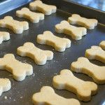 Lola's Pumpkin Dog Biscuits