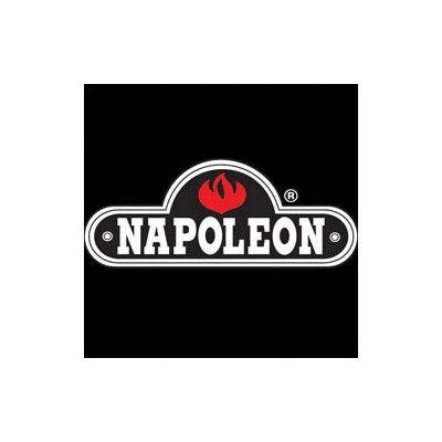 """Napoleon Direct Vent Fireplace Top Vent Kit Size: 4"""" x 7"""" (5 Ft. Flex Vent) GD7TVK"""