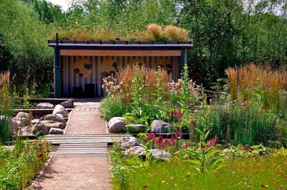 84 Best Wetland/ Bog Images On Pinterest