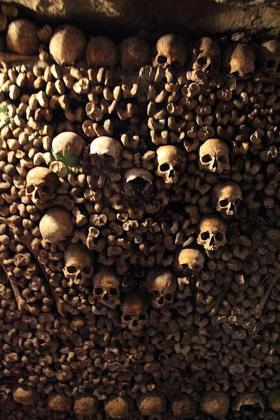 Catacombs of Paris; skulls in shape of heart.