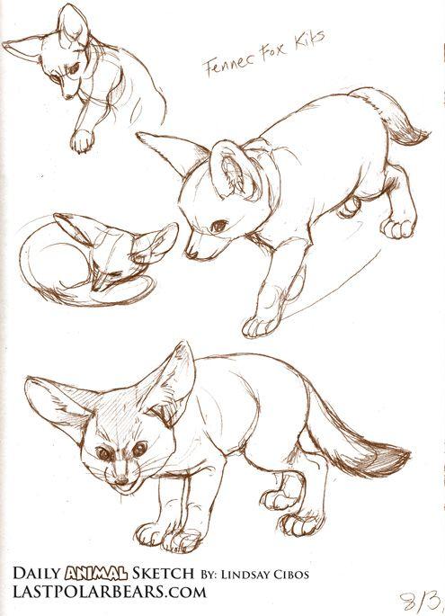 Daily_Animal_Sketch_015.jpg (495×685)