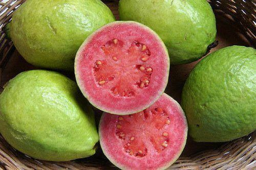 The pink guava fruit loaded with vitamins and good for you.