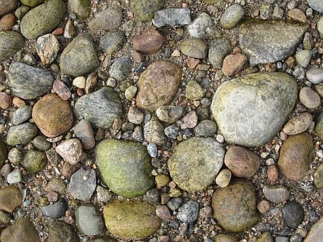 Stones on the beach at Tadoussac, Quebec