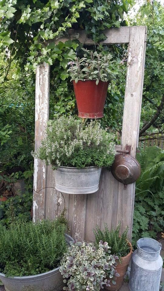 Old weathered door, bucket, galvanized pots