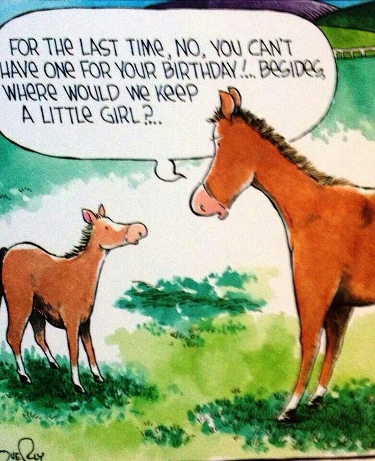 Because every horse deserves to be loved by a little girl at least once in their…