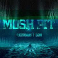 FLOSSTRADAMUS - MOSH PIT ft. Casino by Flosstradamus on SoundCloud