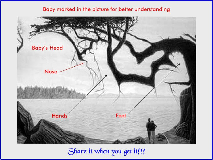 Can You Find Something Hidden in this picture riddle answer