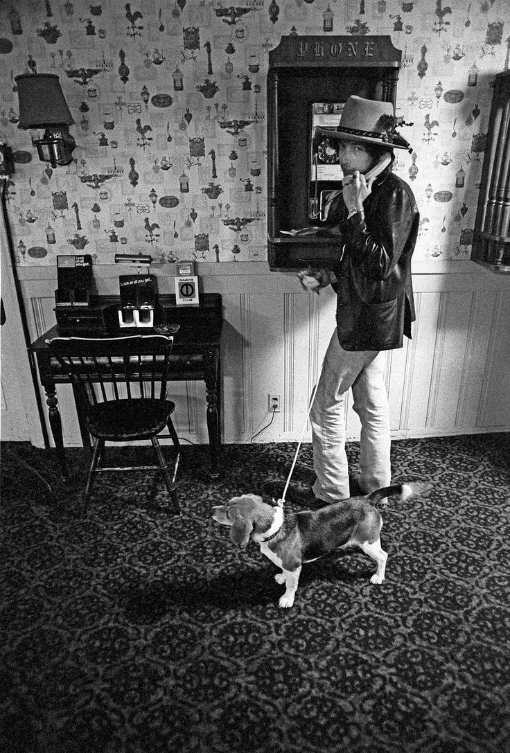 Bob Dylan at The Sea Crest Motel in North Falmouth, Massachusetts and the first appearance on camera of Bob Dylan's beagle. The Sea Crest is the band's early base and the cavernous indoor tennis court area is converted into rehearsal space for them