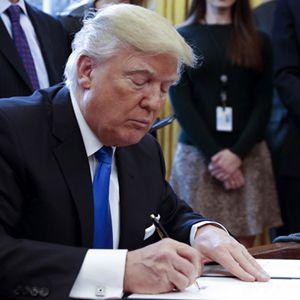 President Trump Travel Ban Poll on http://www.musicnewsnashville.com/president-trump-travel-ban-poll/