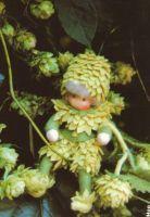 Patronenboek bloemenkinderen hop, klaproos, elfenbankje mannetje, elfenbankje vrouwtje en kastanje - Duimelotje
