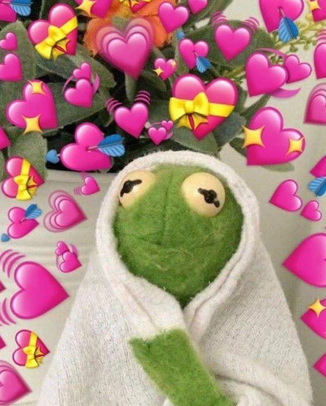 Kermit The Frog Hearts Wallpaper : kermit, hearts, wallpaper, Hehehehehehe, Kinda, BYEZZZ, #cute, #likelike, #followme, Th…, Memes,, Wallpaper,, Memes
