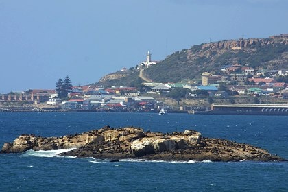 #LifeHasPerks   Seal Island. South Africa.