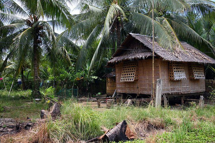 69 Best Philippine Nipa Hut Bahay Kubo Images On
