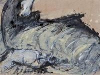 Camille Souter - Dead Basking Shark With Liver Exposed