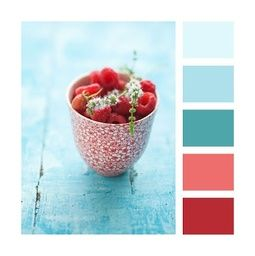 Colour Palettes – Raspberry and blue