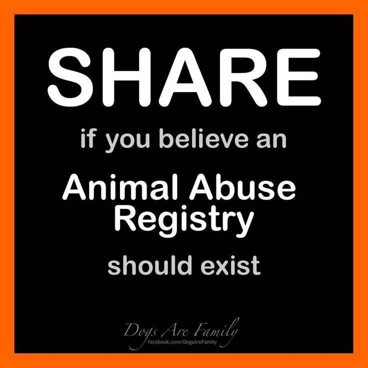 pass this on!: Cat, Life, Animal Rights, Animal Cruelty, Creature, Animal Abuse, Abuse Animals, Dog, Abuse Registry