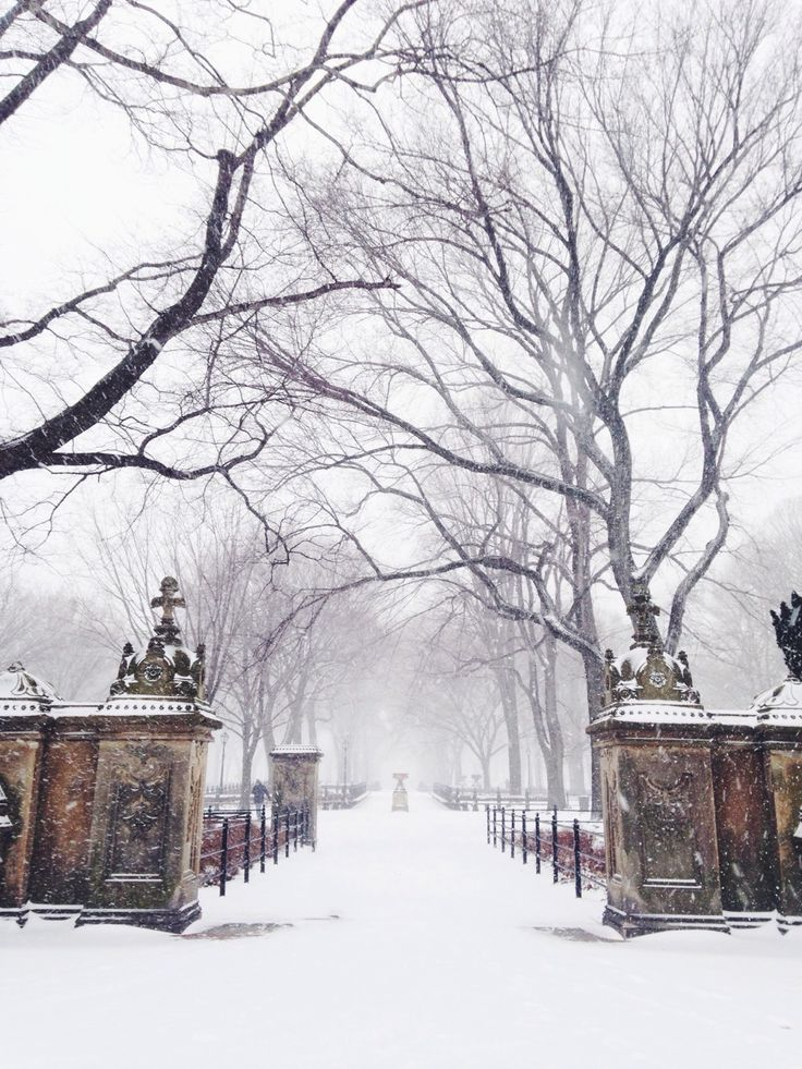 If my house could be in perpetual fogginess/winter…like in Narnia, that would be neat.