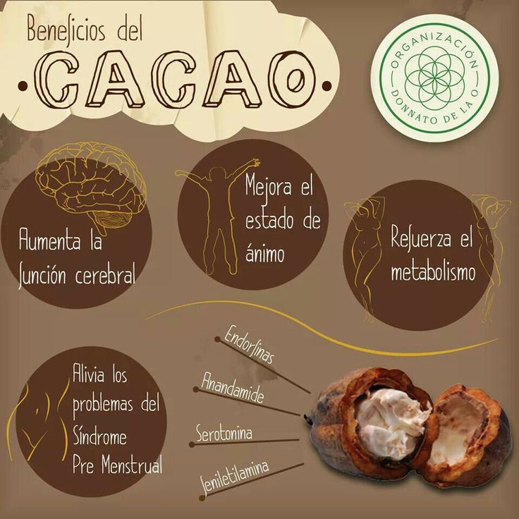 Cacao Herbal Monograph