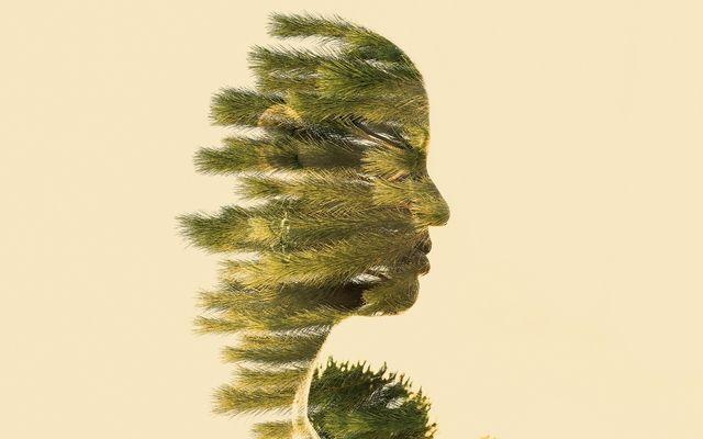 Spirit of Nature 5 by Gianluca Scolaro