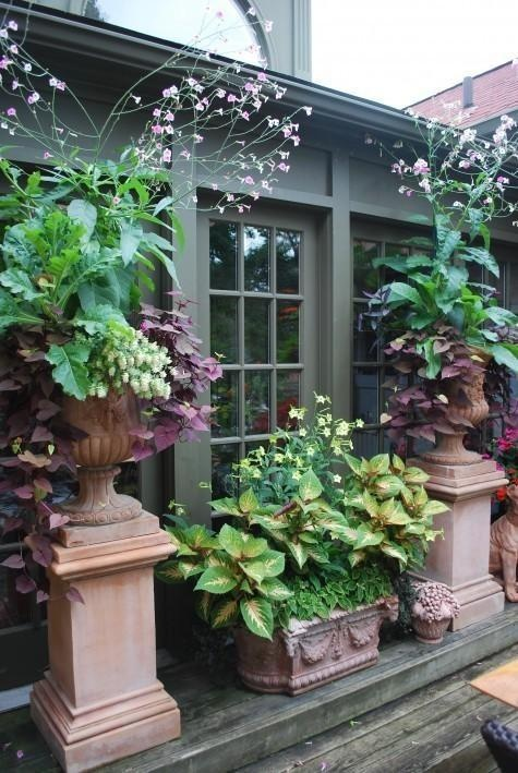 Foliage containers