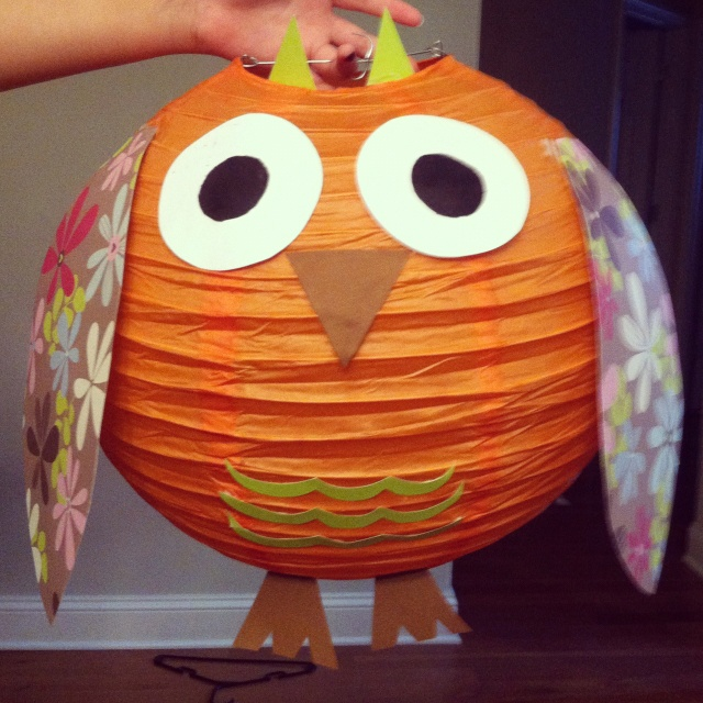 Paper lantern owl... So cute!