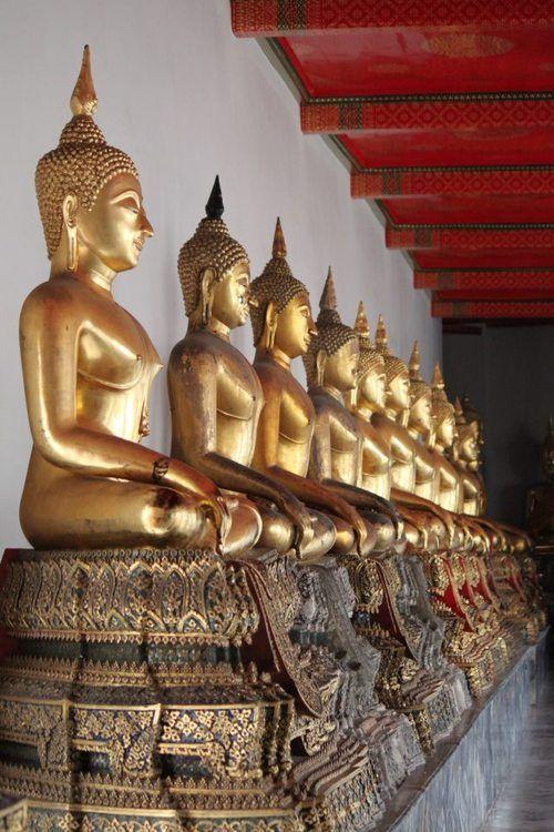 row of Thai buddhas