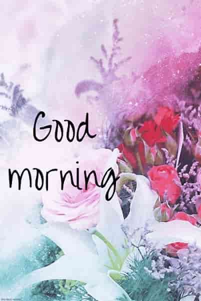 Best Good Morning Hd Images Wishes Pictures And Greetings Insta