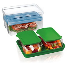 Fit & Fesh.... these containers are super cool