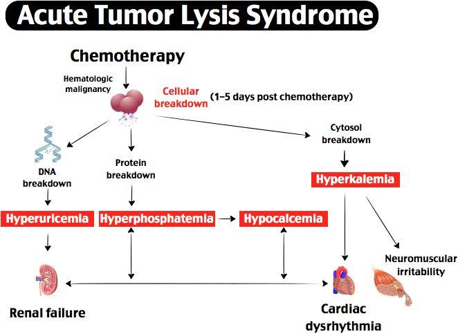 rosh review | hematology | pinterest | tumor lysis ... a diagram of an atom of chromium diagram of lysis