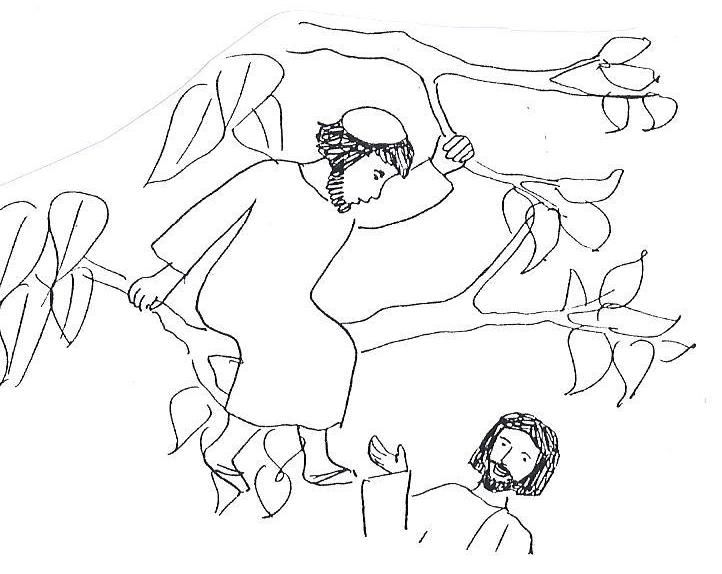 Biblekidseu New Testament Zacchaeus Coloring ColoringChristian