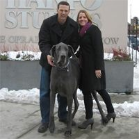 Giant George, who once held the record for World's Tallest Dog, has died at the age of 7. #GiantGeorge #GreatDane