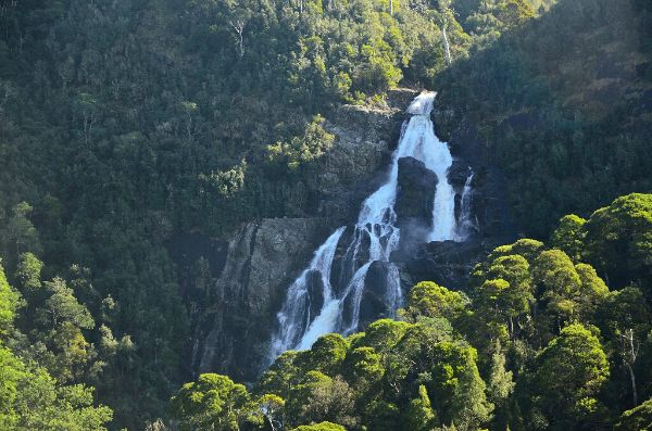 St Columba Falls, north east #Tasmania. Photo by Dan Fellow, article for www.think-tasmania.com