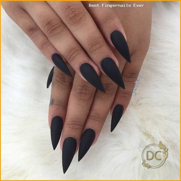 Matte Black Stiletto Pointy Nails In 2020 Pointy Nails Black Acrylic Nails Long Black Nails