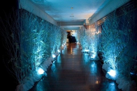 This plain Hallway was transformed into a magical winter wonderland entry using uplight on bare branches.