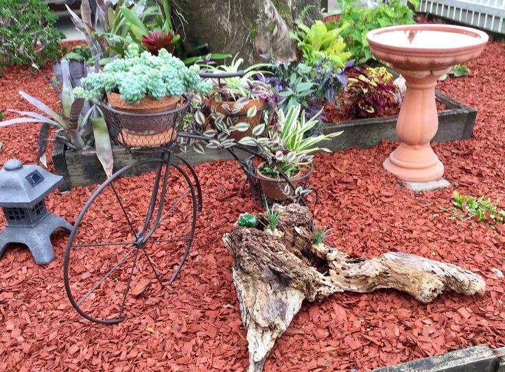 Plants on bikes
