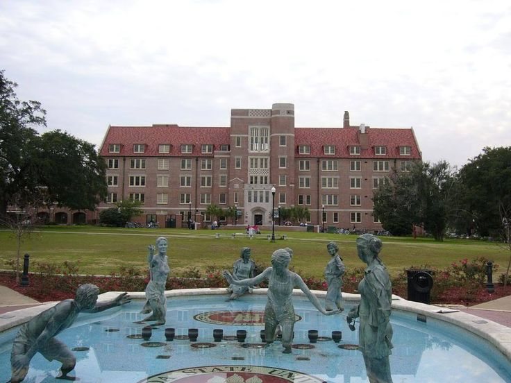 Coming into any college, like Florida State University, not knowing what to expect is terrifying, especially when it comes to dorm life. Luckily for you, I have ranked the freshman dorms at FSU from the best to the worst. 1. Azalea Hall Azalea hall is...